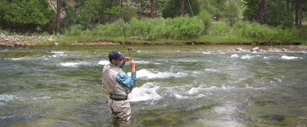 Roaring Fork Fishing Rivers Sue Hess